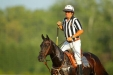 Polo Referee with dB Polo Belt